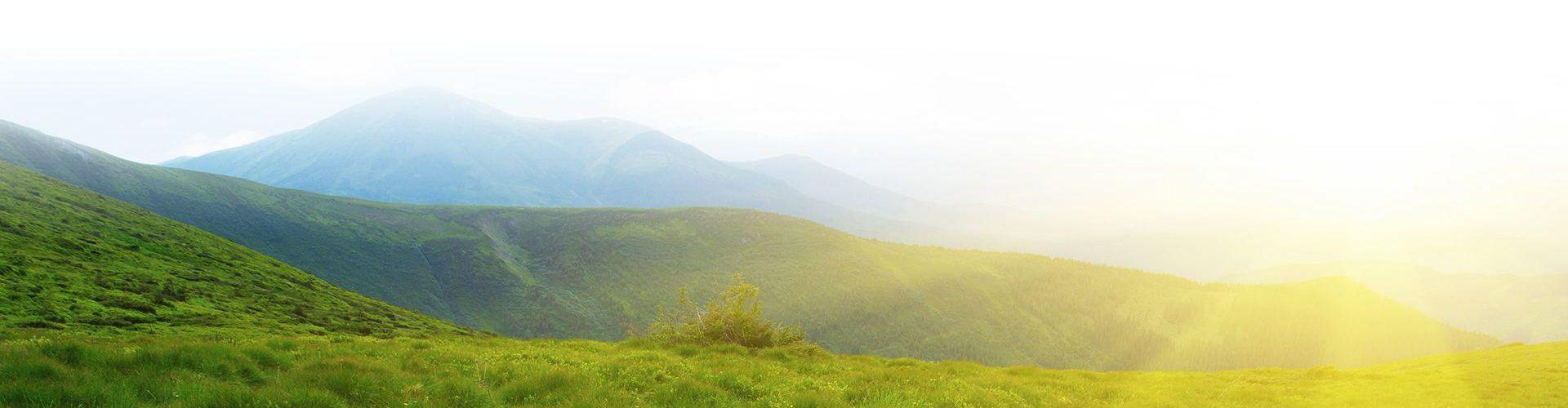 Grassy hills at sunrise.